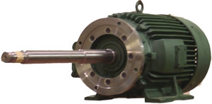 Pump Modified EQPIII Motor with extended shaft & D-flange